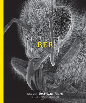 Bee By Fisher, Rose-lynn